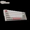 Akko 艾酷3068 9009改 有线机械键盘 TTC金粉轴 68键