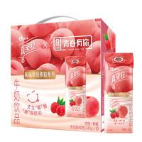 MENGNIU 蒙牛 真果粒白桃树莓 240g*10盒