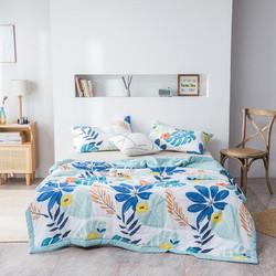 诺塔 夏季水洗棉空调被夏凉被 200*230cm
