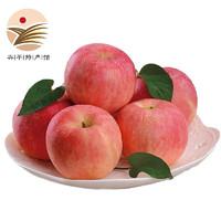 PLUS会员:苹果红了 红富士苹果 果径75-80mm  带箱5斤装