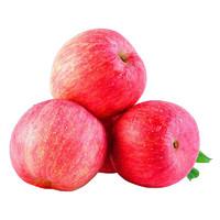 见果是果 陕西红富士苹果 75-80mm 带箱5斤