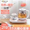 小熊养生壶煮茶器煮茶壶家用多功能恒温全自动保温办公室小型玻璃