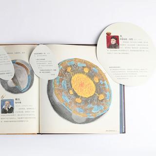 丹妈童书 地球简史与宇宙简史儿童版 2册套装 7-8-9-10岁小学生一二三四年五六级课外阅读物少年儿童科普启蒙绘本天文科学图画书籍