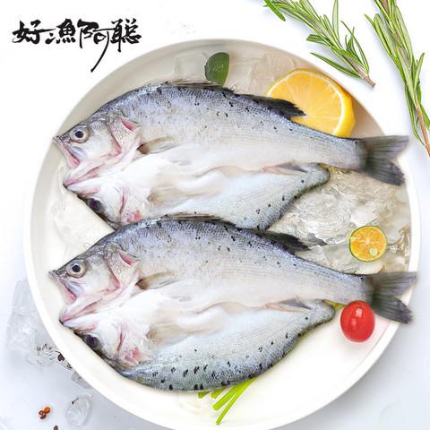 好渔阿聪  三去白蕉海鲈鱼(2条装) 净膛开背净重600-800g烧烤 清蒸 红烧食材 生鲜 鱼类 健康轻食