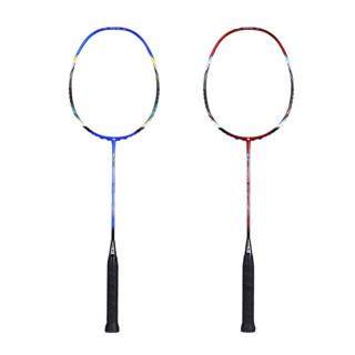 FLEXPRO 佛雷斯 佛雷斯(FLEXPRO)羽毛球拍双拍超轻全碳素对拍(已穿线) 超值对拍