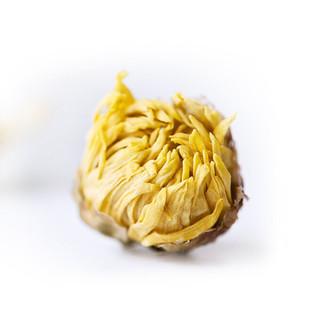 qiyueshang 七月尚 胎菊