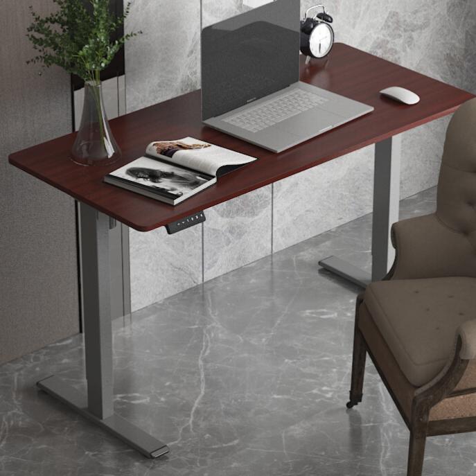 Loctek 乐歌 E2 电动升降桌 胡桃木色桌板+银灰桌腿款