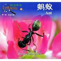《新法布尔自然观察法11·第1辑·昆虫王国:蚂蚁》