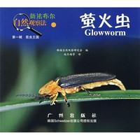 《新法布尔自然观察法1·第1辑·昆虫王国:萤火虫》