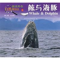 《新法布尔自然观察法13·第2辑·水王国:鲸与海豚》