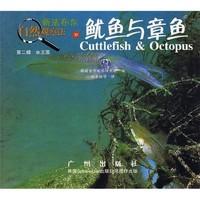 《新法布尔自然观察法20·第2辑·水王国:鱿鱼与章鱼》