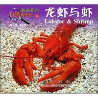 《新法布尔自然观察法24·第2辑·水王国:龙虾与虾》