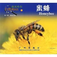 《新法布尔自然观察法3·第1辑·昆虫王国:蜜蜂》