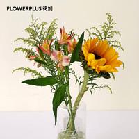 FlowerPlus 花加 简约混合鲜花 向日葵1枝+黄莺2枝+香槟色六出1枝