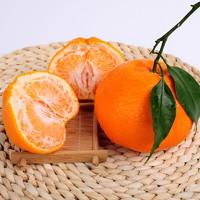 青见柑橘 大果 5斤(75mm-85mm)