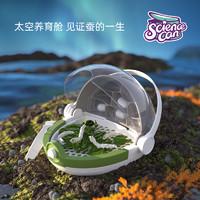 科学罐头蚕宝宝养殖太空舱儿童昆虫观察盒学生活物养育桶养蚕套装