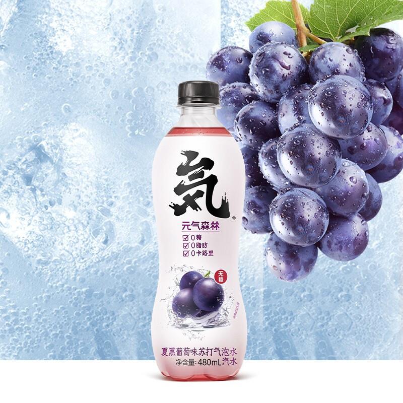 Genki Forest 元気森林 苏打气泡水饮料 480ml*24瓶组合装 荔枝味+夏黑葡萄味