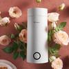 卓朗(Zoomland)电水壶 烧水壶便携式家用旅行电热水壶 随行冲奶泡茶办公室电热保温杯500ML ZL-B500