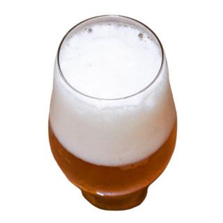 TSINGTAO 青岛啤酒 原浆啤酒 1L*2罐
