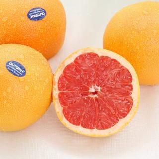 舌香夫人  进口南非西柚6个一级巨无霸大果单果350-500g红心葡萄柚红心西柚新鲜健康轻食 南非红西柚4个装350g起