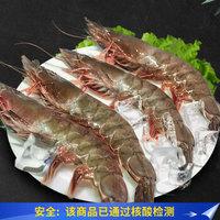 漁公碼頭 女王蝦(大號)活凍 白蝦可扒蝦仁 毛重600g凈400g 13-16只/盒
