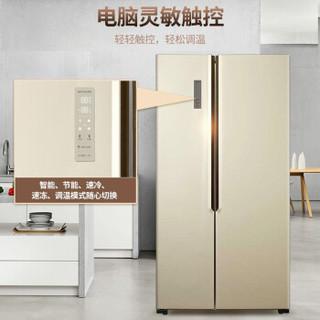 夏普(SHARP)526升536升对开门冰箱 双开门变频 风冷无霜 静音节能 家用电冰箱 大容量 BCD-536WSXE-N金