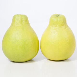 拾柚啦 柚子水果 正宗沙田柚 梅州金柚 新鲜水果   大果2个礼盒装推荐 沙田柚