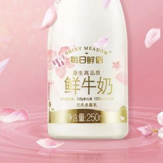 每日鲜语 全脂 鲜牛奶 250ml*10瓶