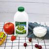 伊利益消酸奶大桶风味发酵乳儿童学生早餐牛奶实惠桶装原味1.05kg