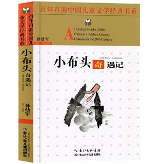《孙幼军经典童话故事书:小布头奇遇记》