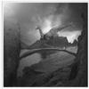 Tomasz Zaczeniuk 作品《长颈鹿之梦》33 x 33 cm 无酸装裱 50版