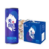 天润 奶啤乳酸菌牛奶饮品细长罐310ml*18罐礼盒装