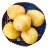 云南高山土豆 2500g马铃薯 洋芋 中果 新鲜蔬菜 产地直发包邮