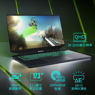 MECHREVO 机械革命 钛钽PLUS 17.3英寸 游戏笔记本电脑