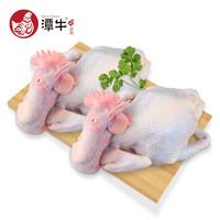 PLUS会员:潭牛   110天文昌鸡母鸡 2只装(净重3.6斤)