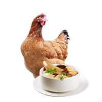 PLUS会员:仓帝 走地鸡 农家三黄鸡 约700g