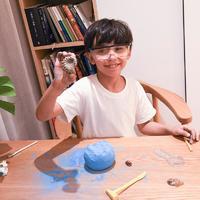 探索地球奧秘,化石挖掘玩具盲盒
