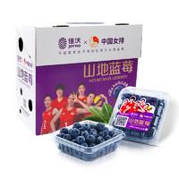 JAVA 佳沃 云南精选山地蓝莓  12盒装 约125g盒 单颗14mm+