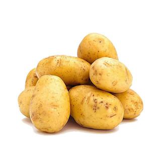 黄土豆新鲜蔬菜马铃薯 10斤