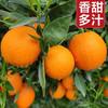 真谷塘 秭归脐橙伦晚春橙夏橙子水果新鲜礼盒装顺丰快递果径80以下 精品80以下果礼盒净重9斤
