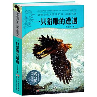 《沈石溪动物小说系列:一只猎雕的遭遇》