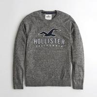 HOLLISTER 霍利斯特  KI320-8406908 男式针织衫