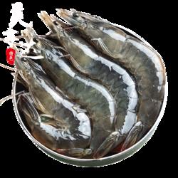 长永 鲜活超大青虾 10-13lm 4斤装