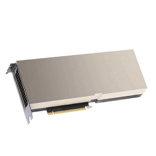 Leadtek 丽台科技 丽台(LEADTEK)NVIDIA A100 40G HBM2/1555GBps 视觉计算GPU/大型数据处理//深度学习/高性能计算HPC