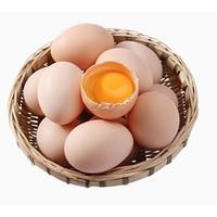 寻鲜鸟 土鸡蛋 40枚