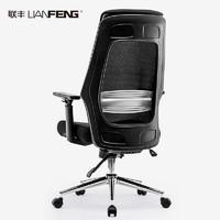 LIANFENG 联丰 DS-180A 人体工学电椅