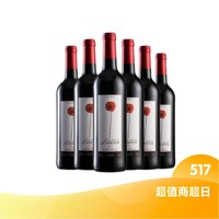 浪漫之花 网红美酒原瓶进口葡萄酒 红酒整箱6支装  经典IGP整箱
