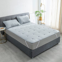 每晚深睡 超声波艾草抗菌纤维床褥 1.2m