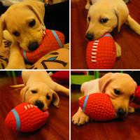 狗狗玩具耐咬磨牙发声球解闷神器小狗柯基幼犬金毛大型犬宠物用品 橄榄球大号