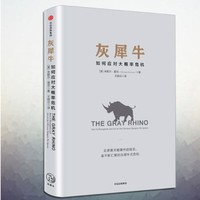 《灰犀牛:如何应对大概率危机》